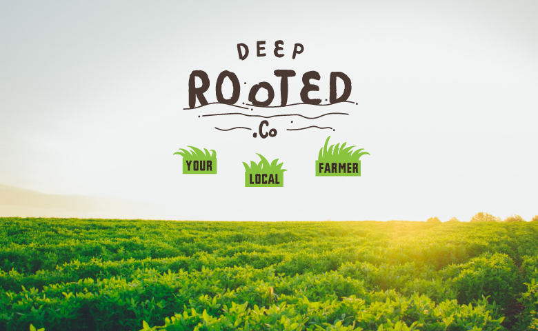 Deep Rooted.Co